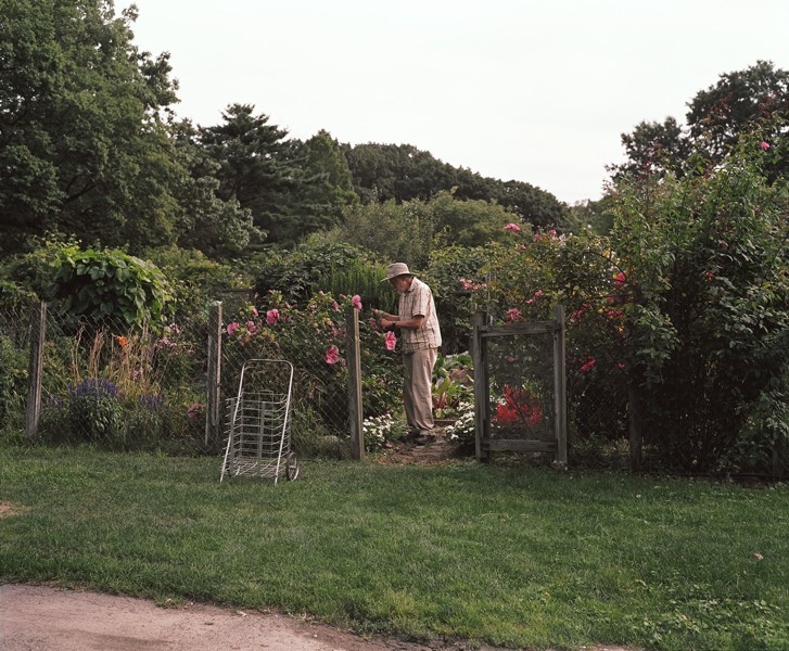 http://www.jerrylim.com/files/gimgs/th-12_Garden_10_29_13.jpg